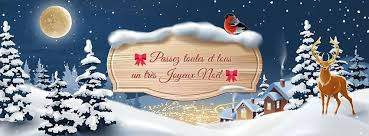 You are currently viewing JOYEUX NOEL ET HEUREUSE ANNEE 2021